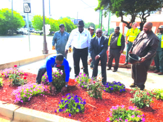 DeKalb Interim CEO Lee May plants flowers at the Beautification Unit on Candler Road. Photo by Glenn L. Morgan/OCG News