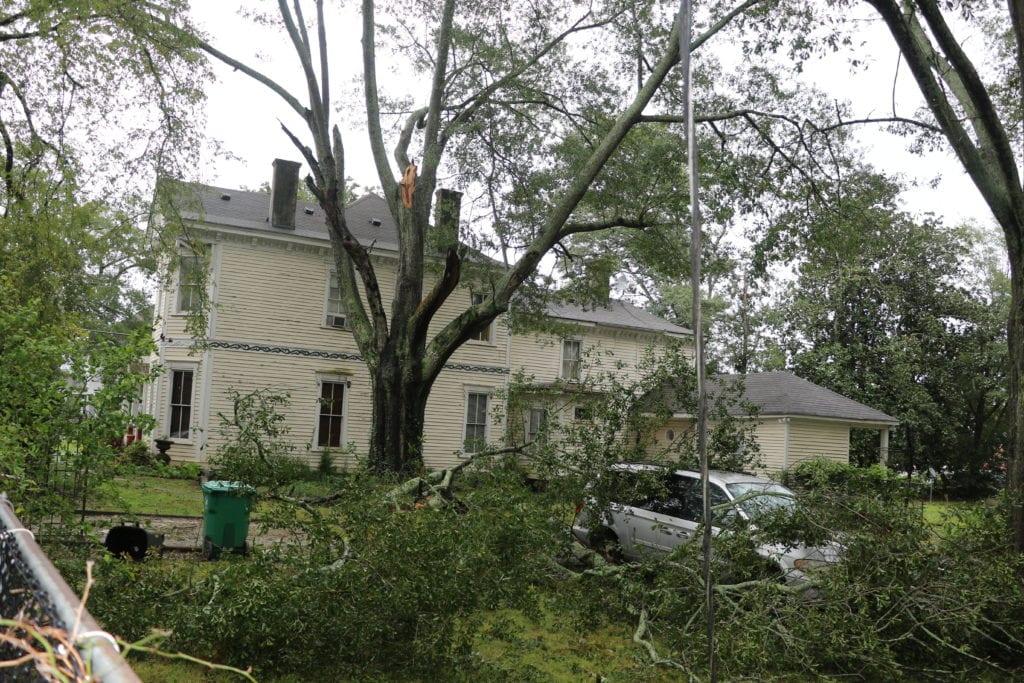 Irma-3-1024x683.jpg