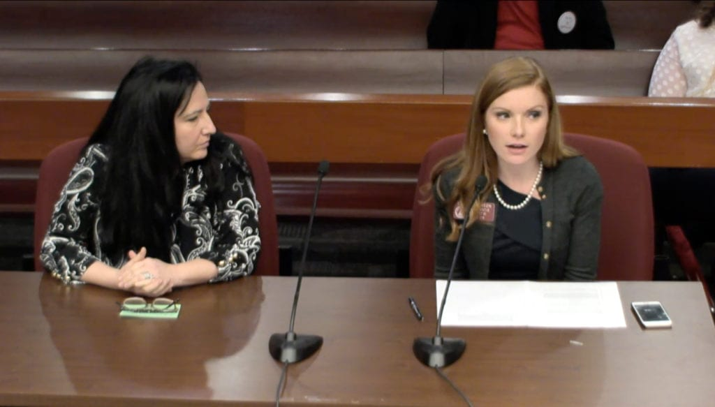 Rep. Meagan Hanson (left) and DeKalb District 1 Commissioner Nancy Jester present HB 961 to Governmental Affairs Committee. Screenshot via LiveStream