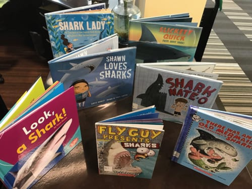 Sharkweek 2018 at DeKalb County Public Library