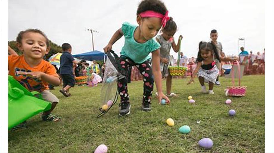 Easter egg hunt 11